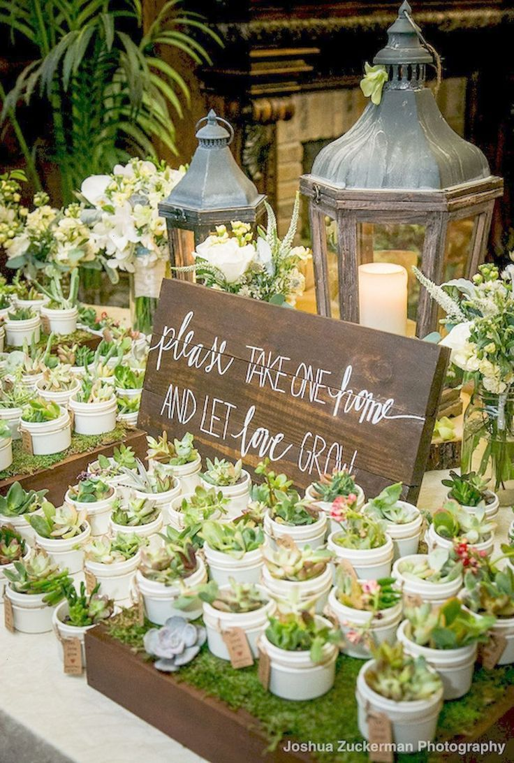 """Please take one home and let love grow"" cacti favors"