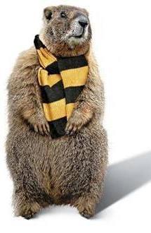 Happy Groundhog Day