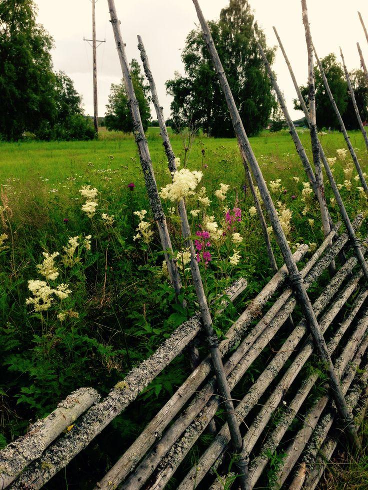 Traditionellt staket Ystegårn Hälsingegård