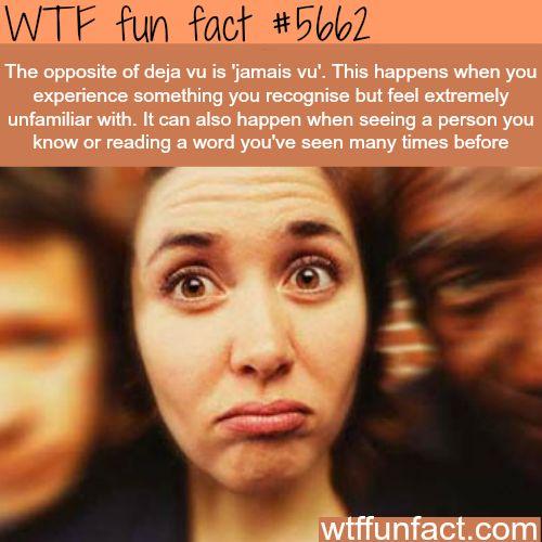 """The opposite of Deja Vu, """"jamais vu"""" - WTF fun fact"""