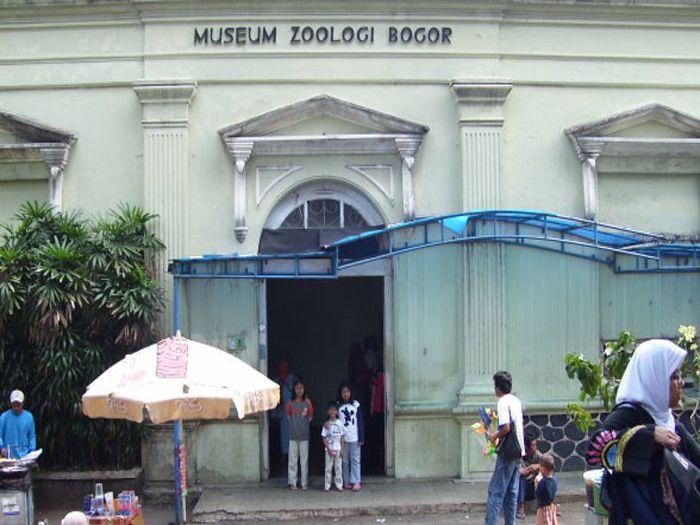 museum-zoologi-bogor