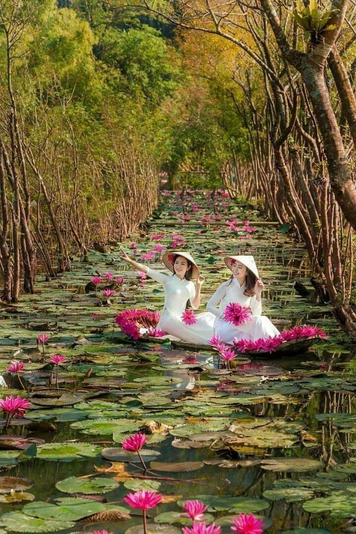 Good Morning Beautiful Flowers Images Beautiful Nature Girl In Water