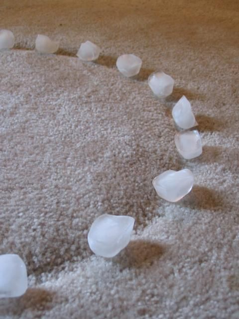 Remove indention in the carpet left by furniture with ice cubes! Where has this tip been all my life?