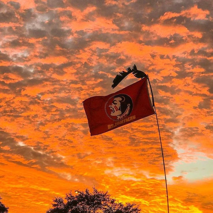 Amazing #FSU #Seminole flag in a gorgeous #sunset.  Whos getting fancy about College football? Thanks @jonnietwotimes  #SuperTailgate #tailgate #tailgating #win #letsgo #gameday #travel #adventure #stadium #party #sport #ESPN #jersey #sports #league #SportsNews #score #photooftheday #love #Football #NFL