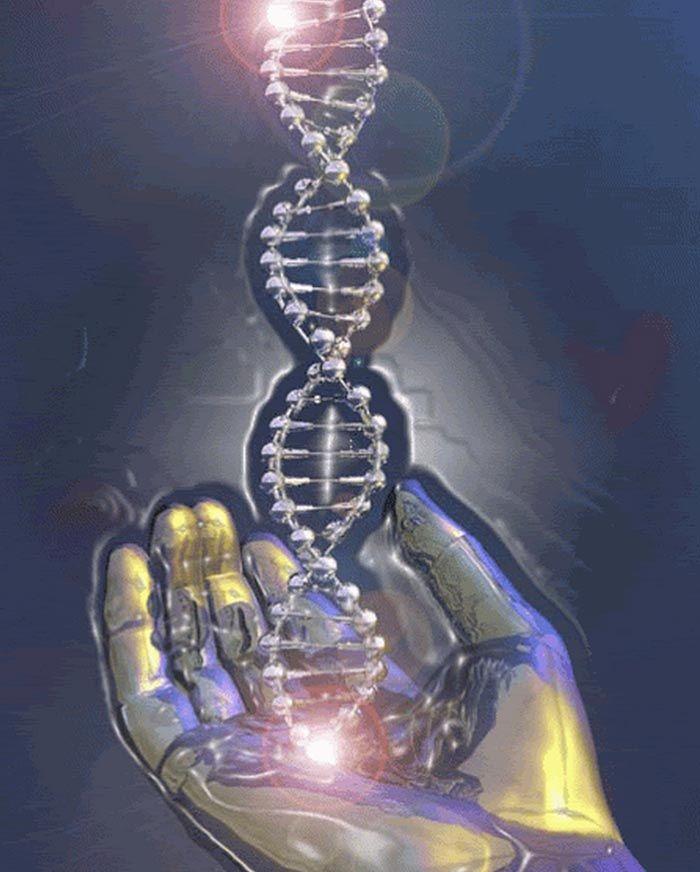 "191 Best Art On ""Caduceus-Kundalini & DNA"" Images On"