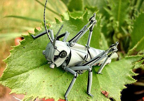 Robot Hopper - Created by Tristan Bethe