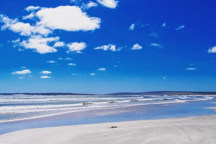 Come visit us! The beautiful bright beach of Paternoster. #visitsouthafrica #beach #instanature