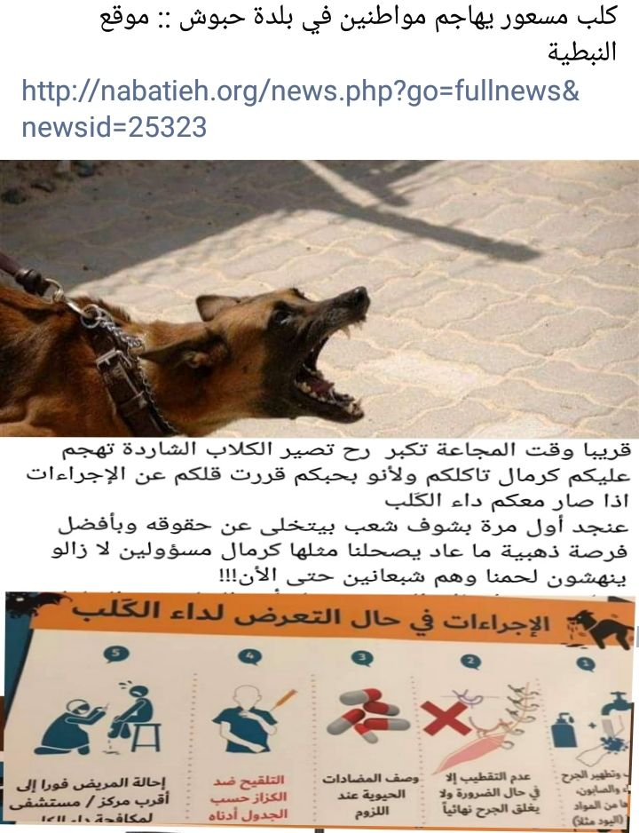الكلاب الجائعة تهاجم الناس في جنوب لبنان Movie Posters Poster Movies