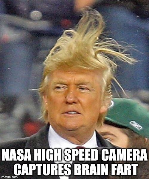 Donald Trumph hair - Imgflip