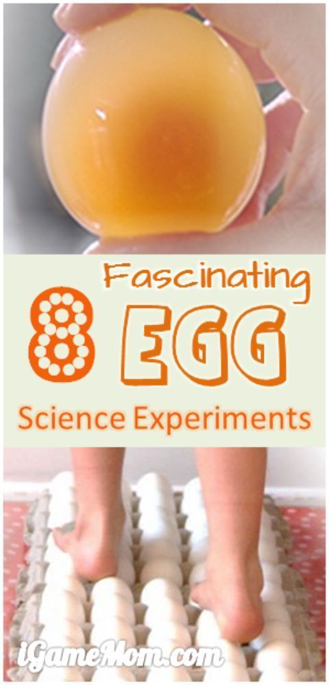 8 fascinating egg science experiments for kids, easy to do at home in the kitchen, also good for science fairs.