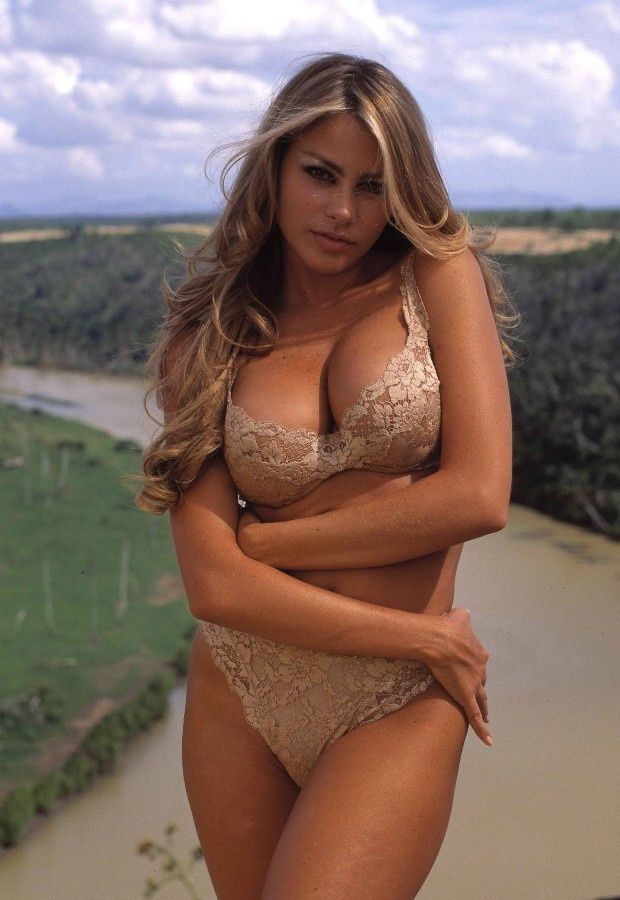 Sofia Vergara - her body type is beautiful I love that it's not stick thin and marries curves with flesh