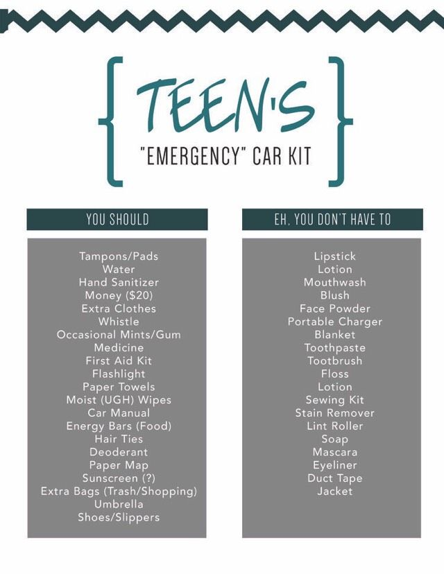 This tip made me think of you: Teen Driver Car Kit