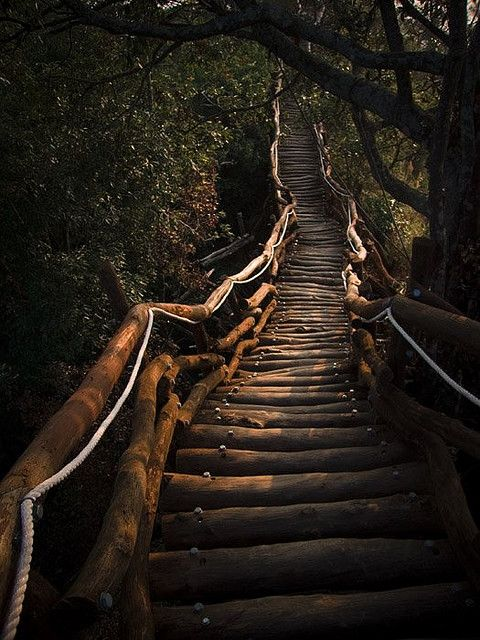Wood stairway....it makes me want to walk up all those lovely stairs just to see what's at the top!
