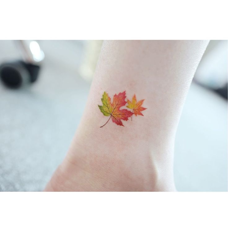 korean style color maple leaf tattoo design on ankle