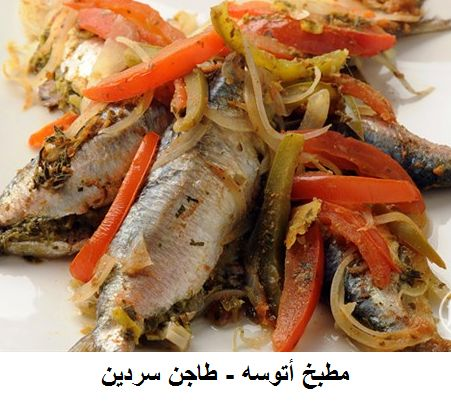 146 best fatafeat images on pinterest appetisers arabian food recipesplacesfoodiesrecipiesrezeptefood forumfinder Choice Image
