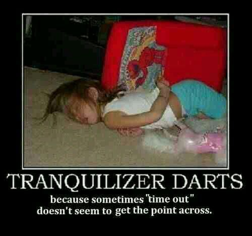 Tranquilizer darts - because sometimes ''time out'' doesn't seem to get the point across.