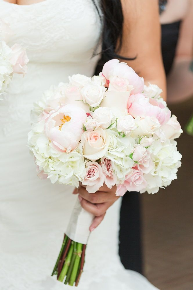light pink roses and peonies white roses and white hydrangea bouquet tied with white - White Hydrangea