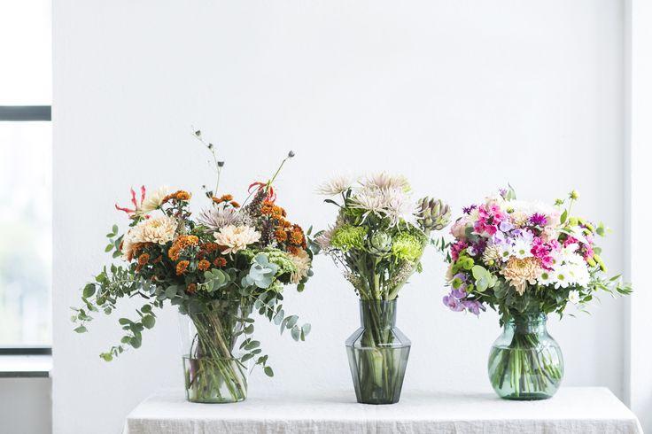 Die besten 25 chrysanthemen strau ideen auf pinterest for Welche poolfolie 0 6 oder 0 8