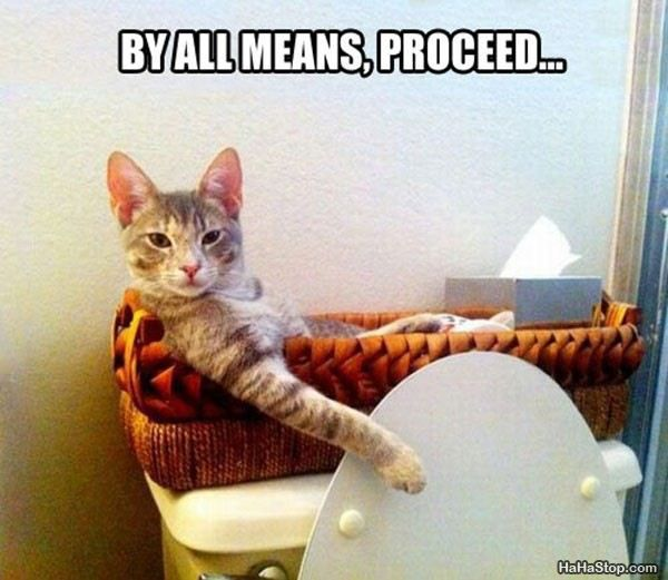Funny Animal Pictures With Captions. @Christopher Ondrusek