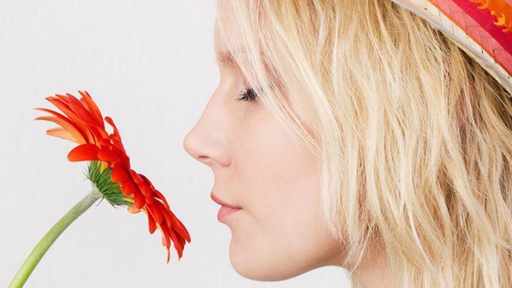 """El sentido humano del olfato: más poderoso de lo que pensamos. """"Durante tanto tiempo la gente ha sido incapaz de detenerse y cuestionar esta afirmación, incluso las personas que se ganan la vida estudiando el sentido del olfato""""."""