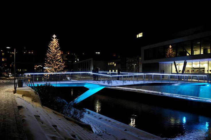 Juletræ i Storaaen