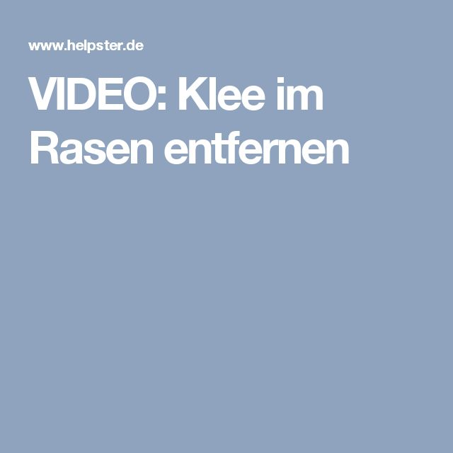 Fabulous VIDEO Klee im Rasen entfernen