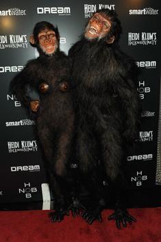 pictures of halloween day parties in new york   Heidi Klum schmeißt zweite Halloween-Party in New York