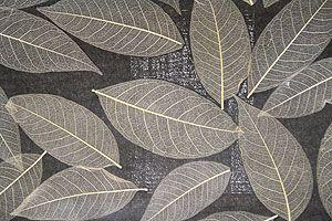 Natur Tapete mit echten Blättern braun Natur Tapeten online kaufen