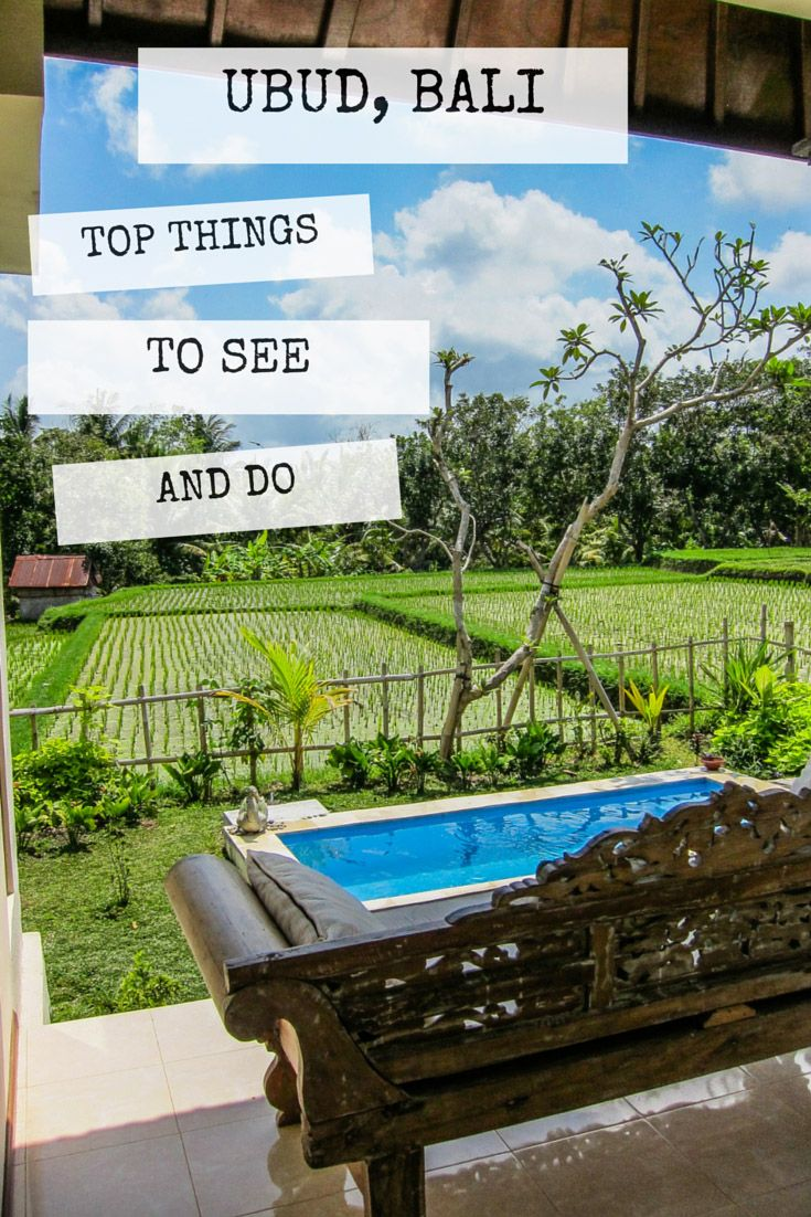 Top Things to See and Do in Ubud Bali   The Blonde Abroad
