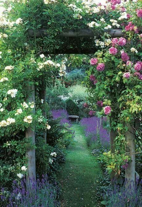 Gardens:  #Garden #arbor.