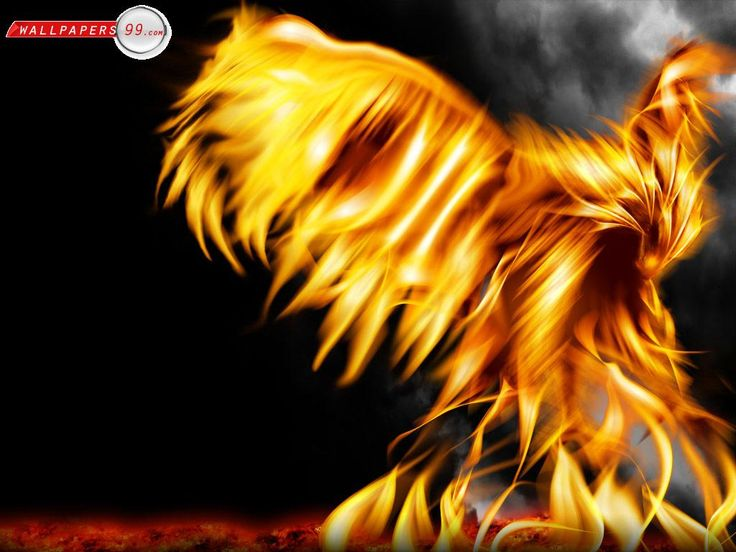 17 Best images about Fire on Pinterest | Eagle wallpaper ...