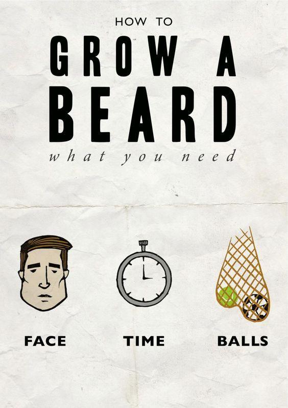 What You Need To Grow A Beard - Beard Meme From Beardoholic.com