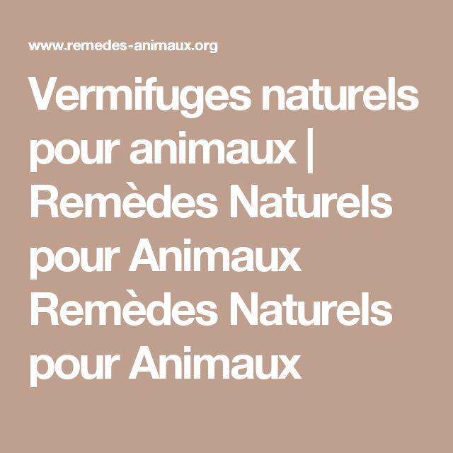 Vermifuges naturels pour animaux   Remèdes Naturels pour Animaux Remèdes Naturels pour Animaux