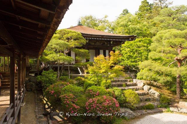 Reimei-den (霊明殿): is the Buddhist reliquary in the Ninna-ji compound. The mortuary tablets of the generations of monzeki of Ninna-ji are enshrined here. #NinnajiTemple, #仁和寺, #Buddhism, #Kyoto, #Japan,#WorldHeritage