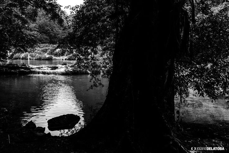 Semuc Champey Guatemala  #josafatdelatoba #cabophotographer #landscapephotography #semucchampey #Guatemala