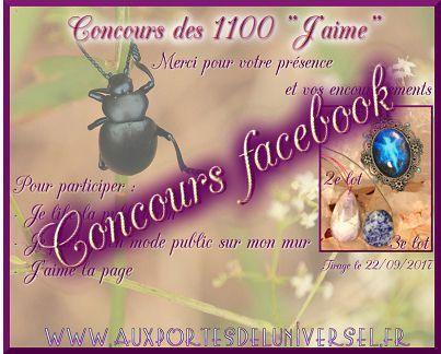 http://auxportesdeluniversel.fr/blog/index.php?post/2017/08/21/Concours-des-1100-j-aime-sur-FB
