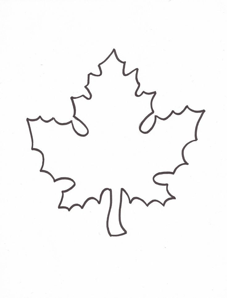 Leaf writing template Essay Help vdtermpaperzpfoskylinechurch