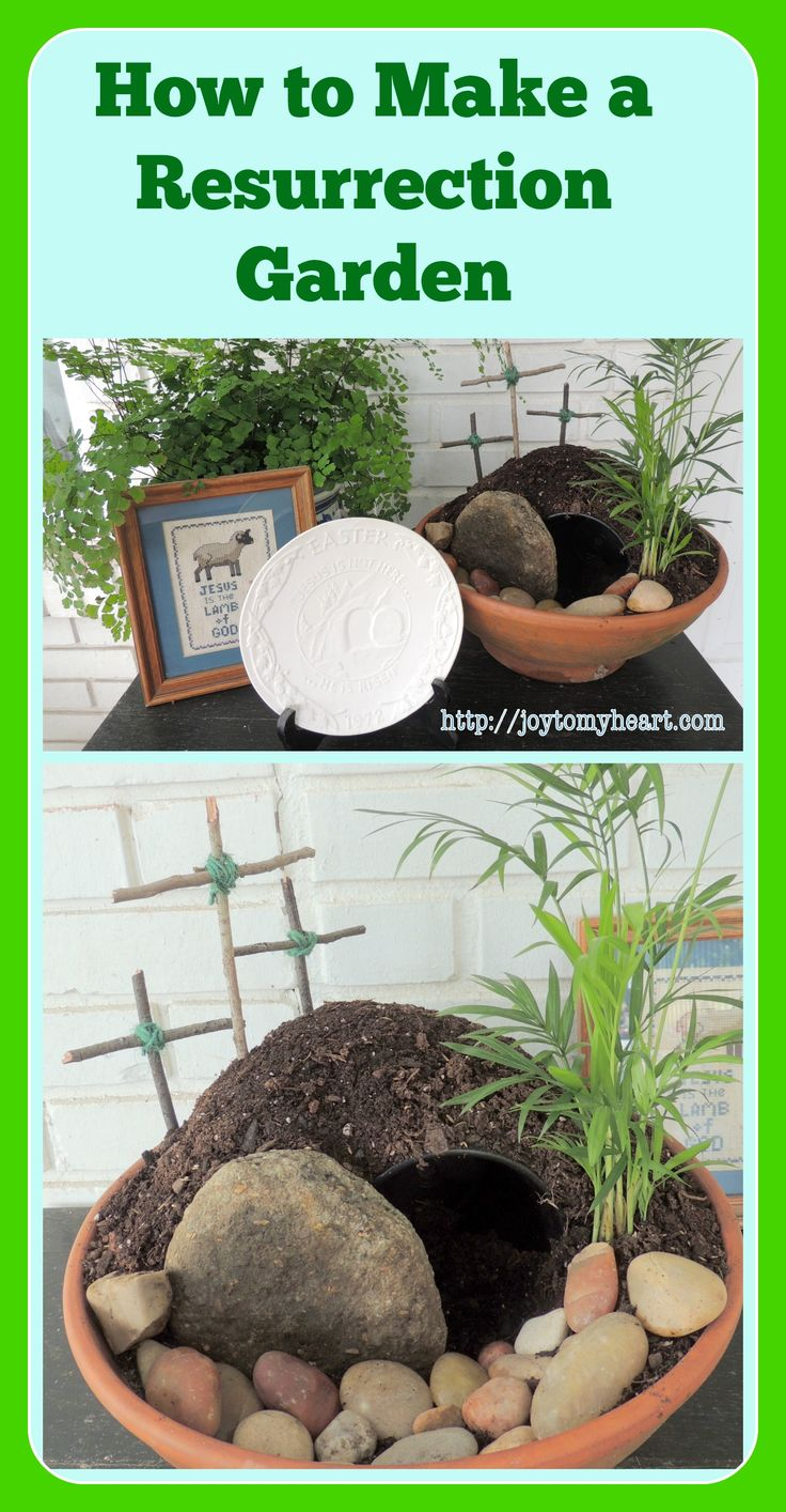Create your own Resurrection Garden with these simple directions. You, too, can have an beautiful display that tells the story of Jesus' Resurrection.