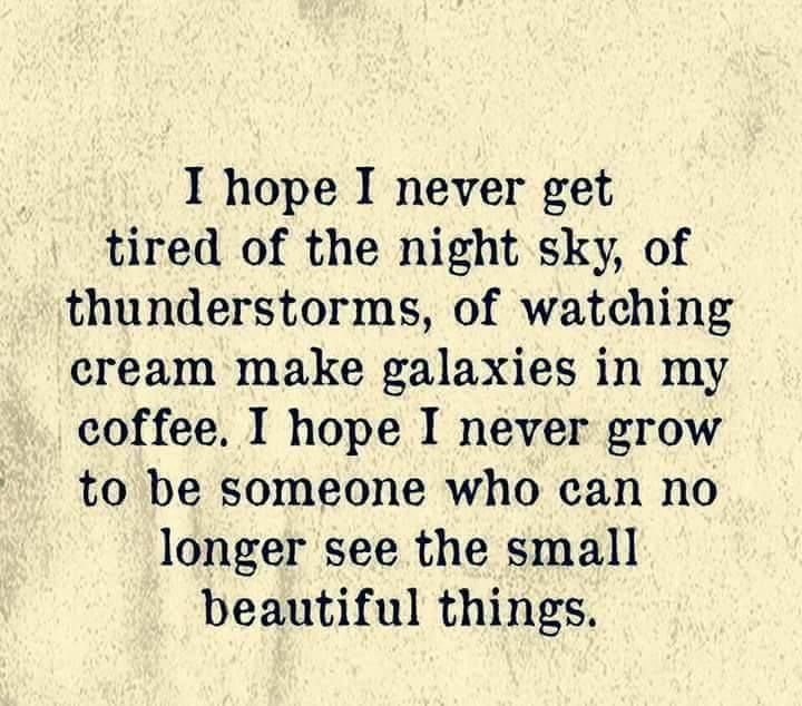 I hope I never get tired of the night sky, of thunderstorms, of watching cream make galaxies in my coffee. I hope I never grow to be someone who can no longer see the small beautiful things.