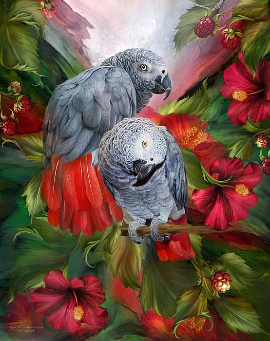 Tropic Spirits - African Greys art by Carol Cavalaris.