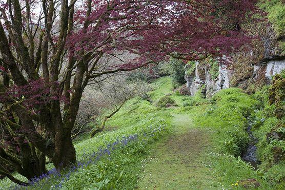 The garden path. Hotel Endsleigh, UK   A Magazine