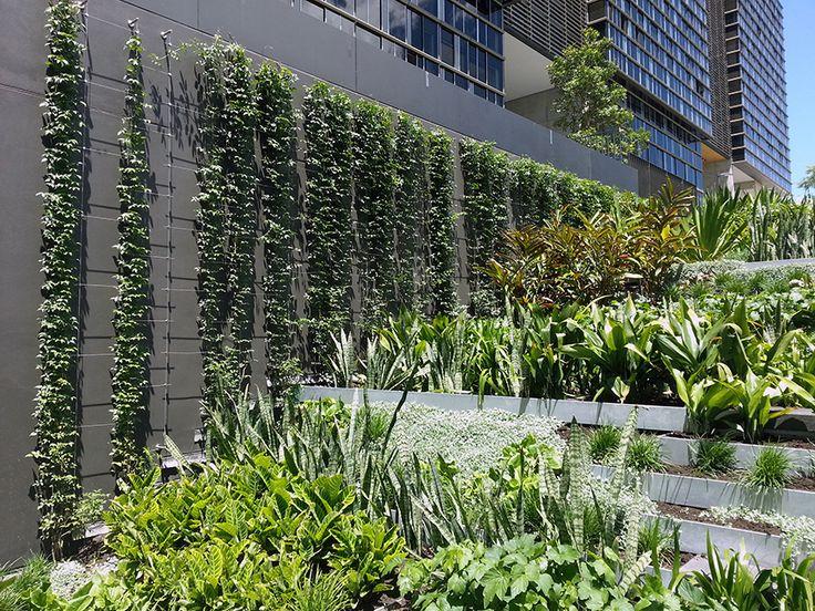 Plus de 1000 id es propos de architecture v g tale sur for Architecture vegetale