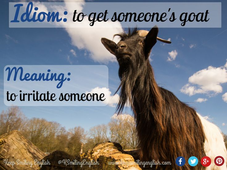 Idiom: to get someone's goat