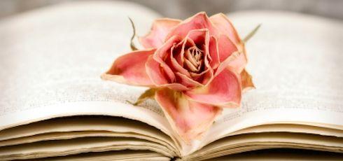 Liebeszitate: von romantisch & positiv bis zu nachdenklich & traurig. In unserer Zitatsammlung findet ihr für jede Stimmung - egal, ob frisch verliebt oder bei Liebeskummer - und jeden Anlass - von Valentinstag, über Jahrestag bis hin zum Hochzeitstag - schöne Zitate über die Liebe.