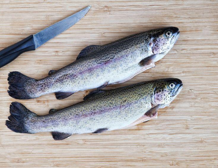 13 best low in mercury fish etc images on pinterest for Lowest mercury fish