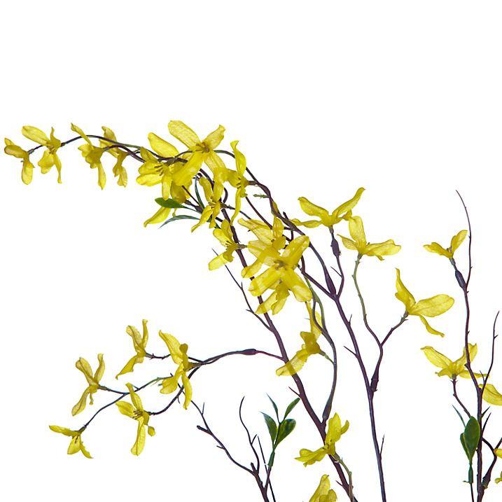 Buy Floralsilk Forsythia, Yellow Online at johnlewis.com