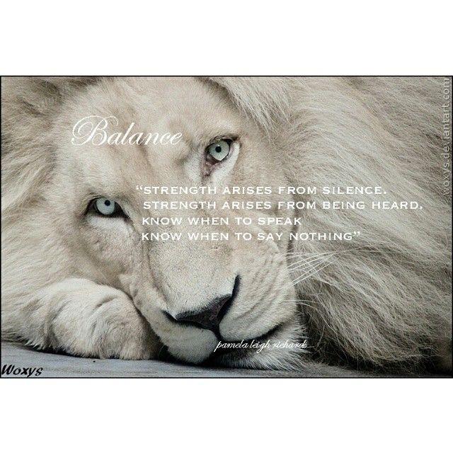 #PicOfTheDay #QuoteOfTheDay #lion #WordsToLiveBy #WordsOfWisdom #Leo #WhiteLion #strength #nature #LionStrongn #powerful