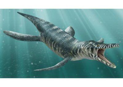 dinosaurios carnivoros gigantes del oceano