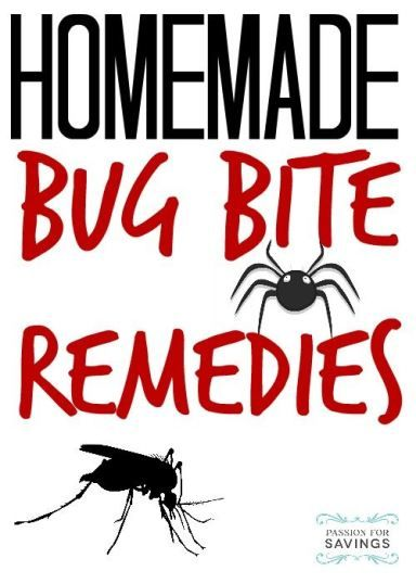 Homemade bug bite remedies! I'm keeping these tips close this summer!