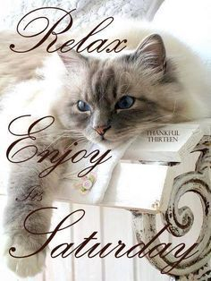 Relax Enjoy Its Saturday saturday blessings saturday quotes saturday images saturday